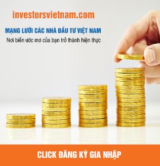 Mạng lưới nhà đầu tư Việt Nam