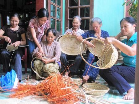 Dự án giúp tăng thu nhập cho Người cao tuổi tại các địa phương